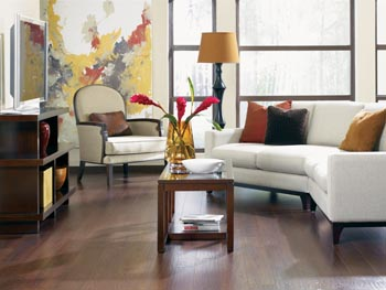 Living Room With Couch And Table On Laminate Flooring Part 93
